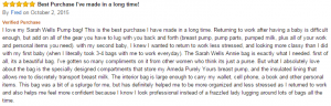 amazon-review-for-sarah-wells-annie