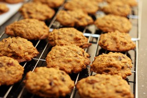pumpkin-lactation-cookie-recipe