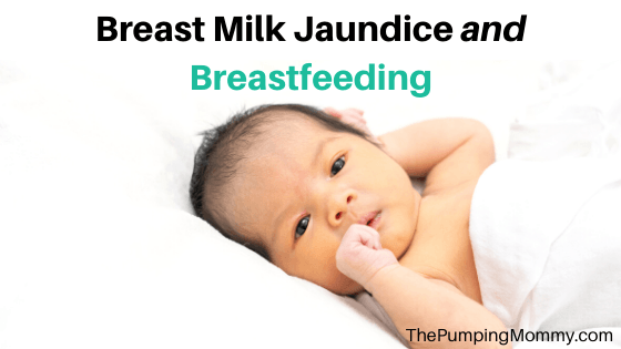 Breast Milk Jaundice and Breastfeeding